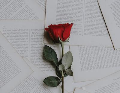 heart wrenching obituaries
